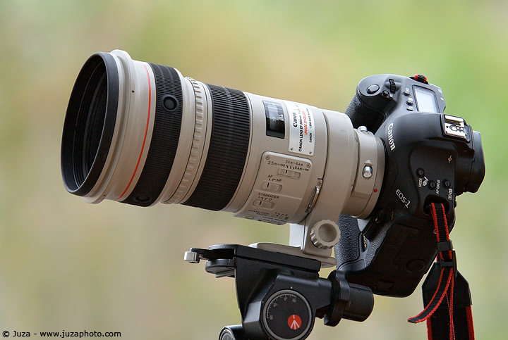 canon ef 300mm f 2 8 l is usm review juzaphoto