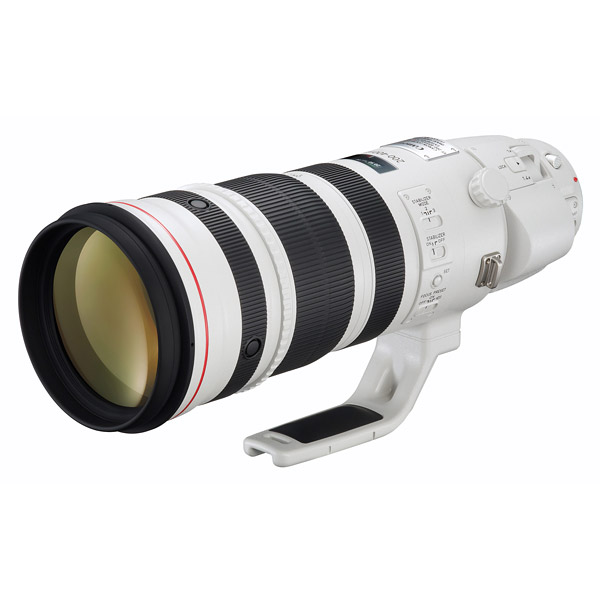 Canon EF 200-400 f/4L IS 1.4x